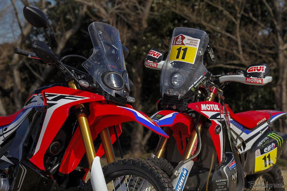 Honda CRF250RALLY(写真左)とCRF450RALLY。《画像提供 ホンダモーターサイクルジャパン》