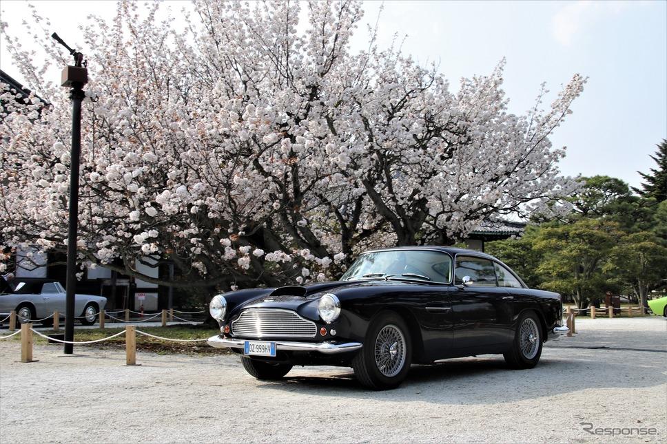 Touring Foreign(イタリア以外のメーカーでトゥーリングのボディを纏った車で最も優れている)…1959年アストンマーティンDB4 3.7《撮影  内田俊一》