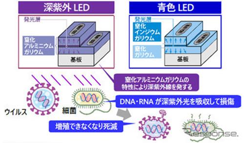 深紫外LEDとは《図版提供 豊田合成》