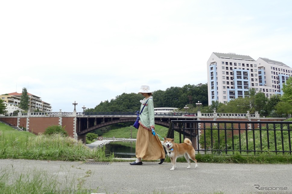 三菱 eKクロススペースで近くの公園に散歩&買い物に出かけた。《写真撮影 島崎七生人》