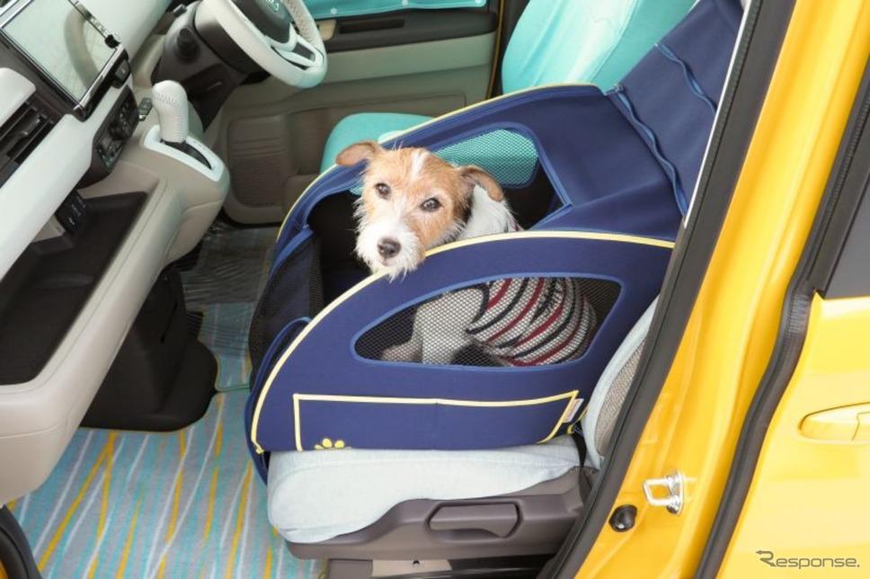 Honda Dogシリーズのペットシートプラスわん《写真撮影 青山尚暉》