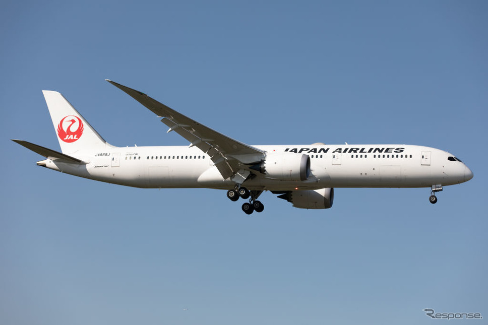 JAL《Photo by Robert Smith/MI News/NurPhoto via Getty Images/ゲッティイメージズ》