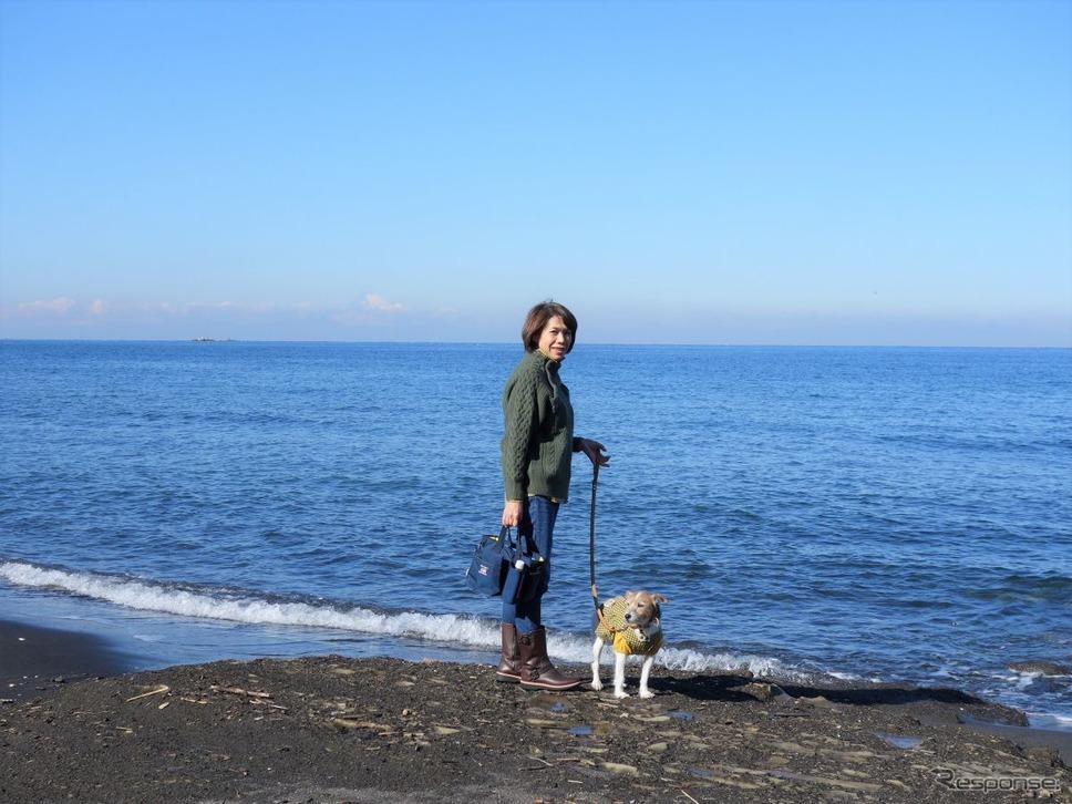 コロナ禍、愛犬とのドライブ旅行に安心して出かけるには?《写真撮影 青山尚暉》