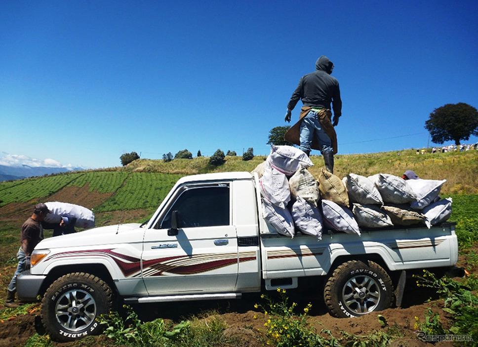 コスタリカの農場で活躍するランドクルーザー《写真提供 トヨタ自動車》