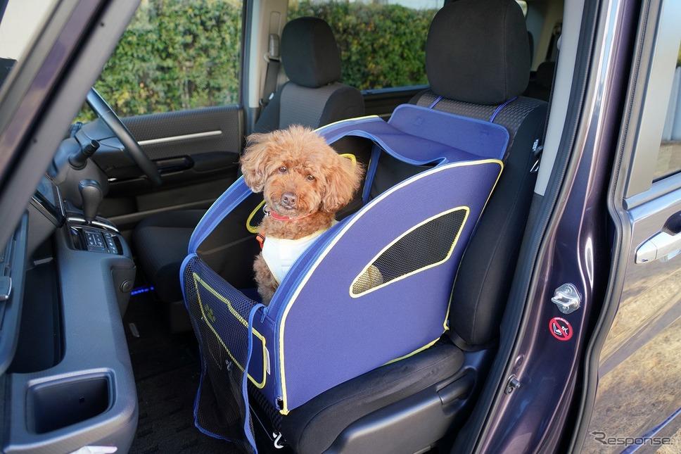 N-BOX 愛犬とのおでかけ、アウトドアVer.(純正アクセサリー装着車)《写真提供 ホンダアクセス》